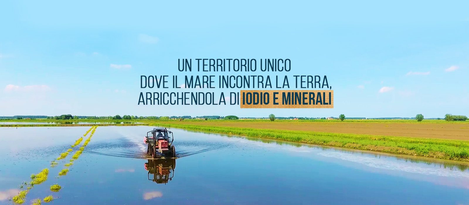 3_GrandiRiso_Slide_1600x700_acqua terra_GdP_0